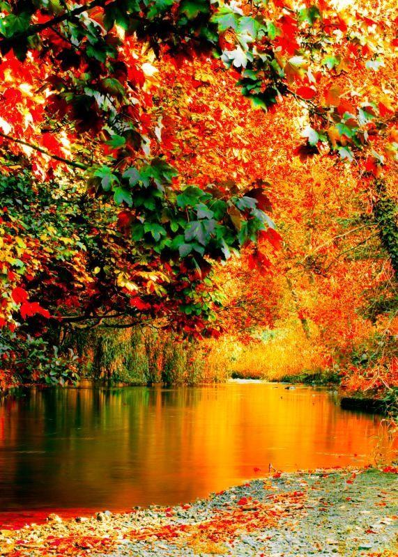 autumn08