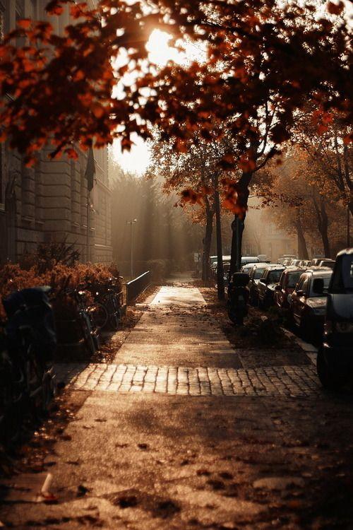 autumn17