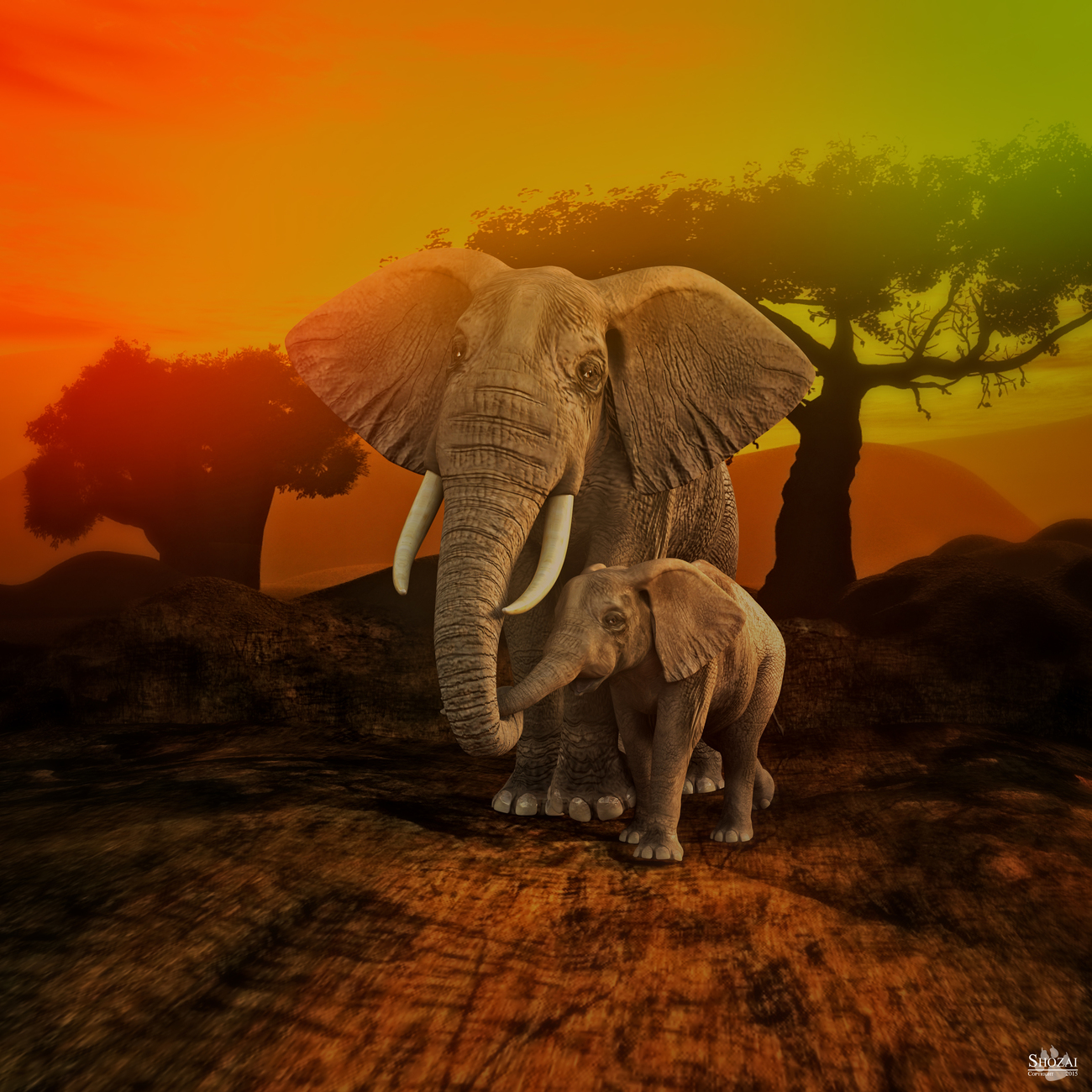 IRay: Elephants, InfinityCove3